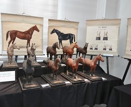 東京農工大学科学博物館「馬と獣医学」