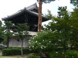 syoukousuihuyo.JPG
